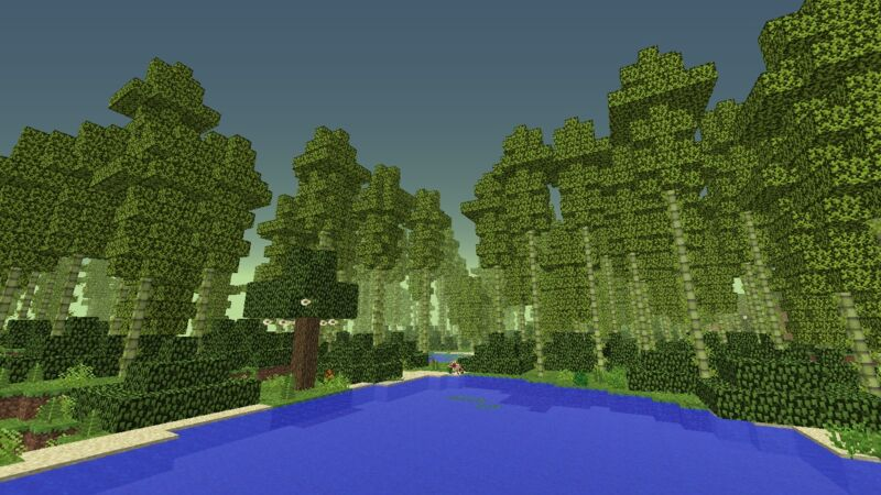 Forest Frontier